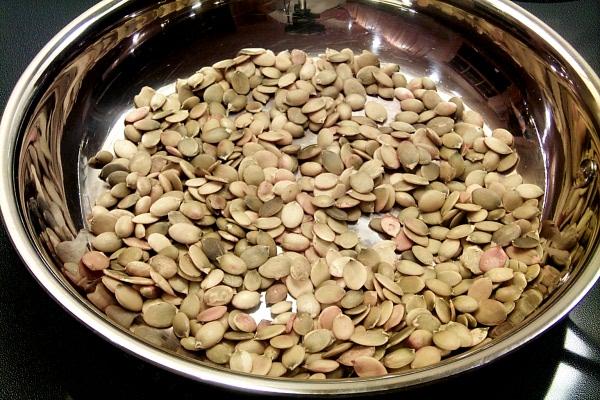p-pumpkin-seeds-3331.JPG
