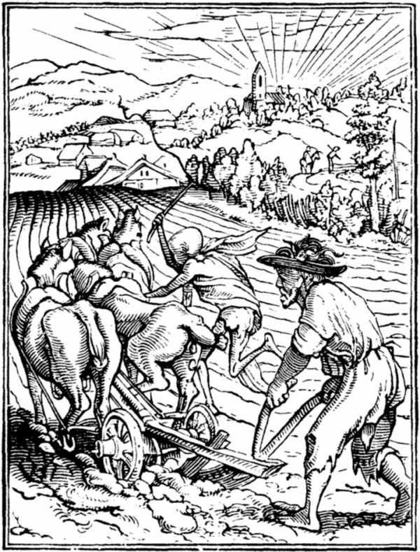 holbein-death-plough.jpg