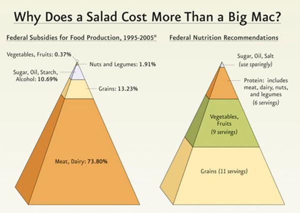 food-subsidy-pyramid.jpg