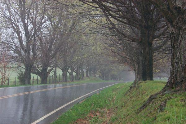 conrad-road-w.jpg