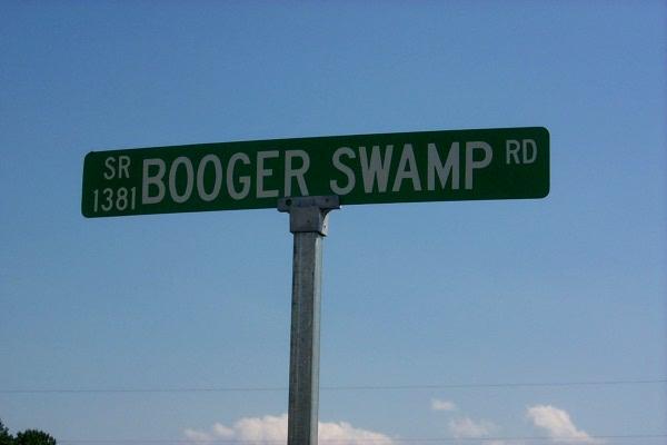 wboog-swamp.JPG