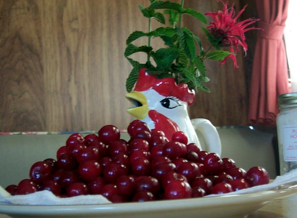 wcherries-624.JPG