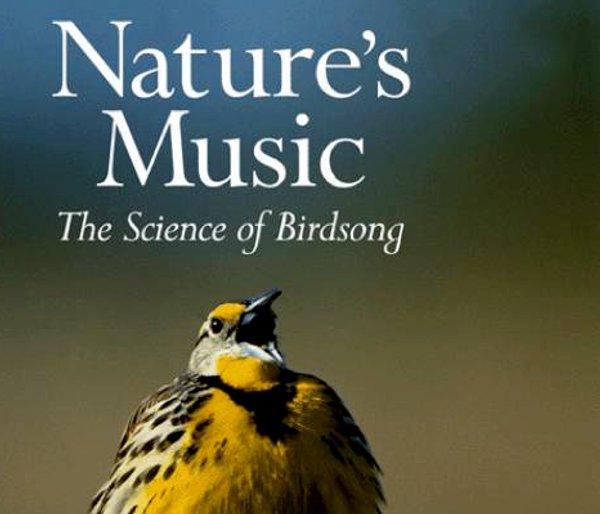 natures-music-2009-02-28-1.jpg