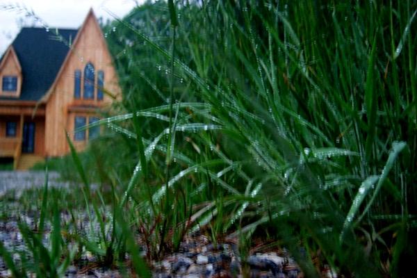 e-downpour-2009-05-04-1.JPG