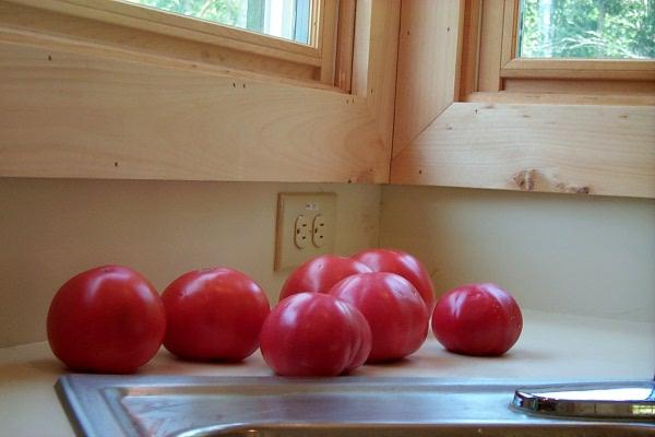 ss-tomato-sandwich-1.JPG