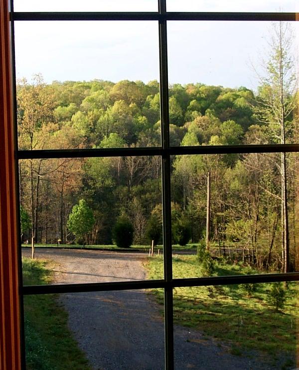 a-window-2010-04-09-1.JPG