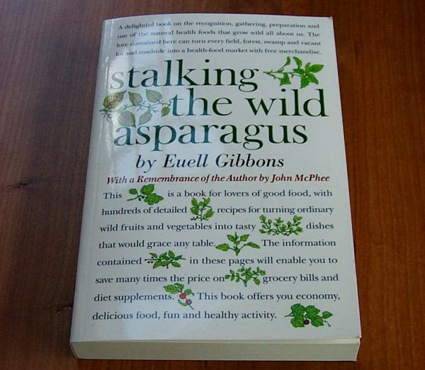 stalking-asparagus-1.JPG