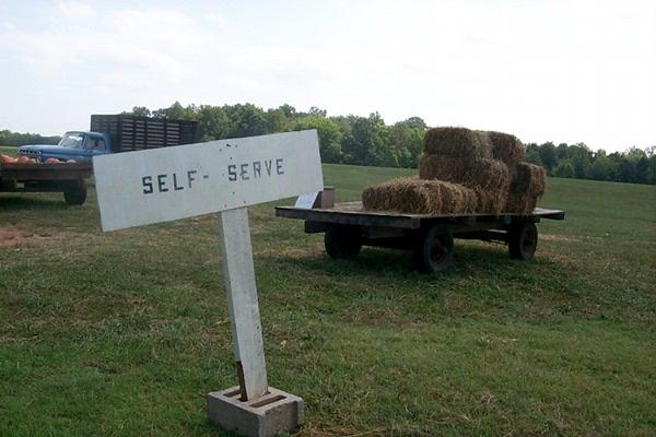 self-serve-1.JPG