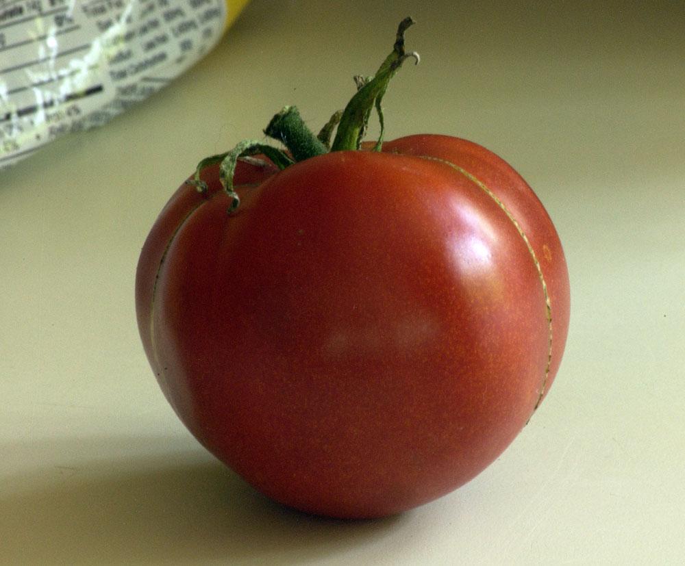 A-tomato-sandwich-2