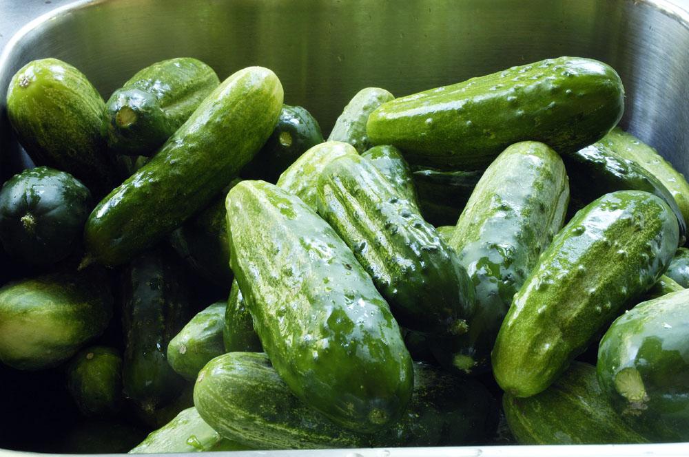 P-pickles-2