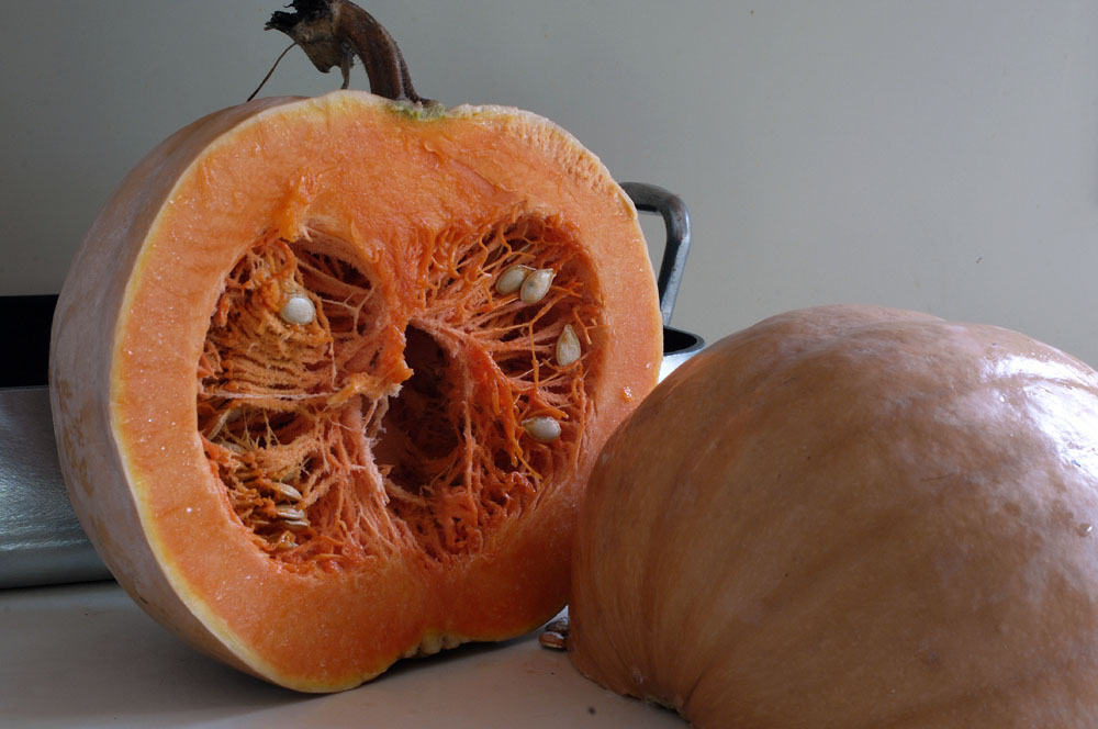 p-pumpkin-2016